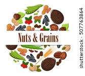 nutritious nuts and grains in... | Shutterstock .eps vector #507763864
