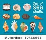 Sea Shells Isolated On Blue...