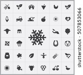 snowflake icon.  agriculture ... | Shutterstock .eps vector #507853066