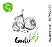 hand drawn sketch garlic group...