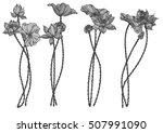 vector set lotus flower for... | Shutterstock .eps vector #507991090
