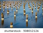 Wooden Poles With Build Up Salt ...