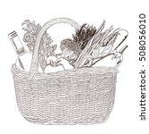 hand drawn vector illustration  ... | Shutterstock .eps vector #508056010