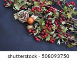 hack berry | Shutterstock . vector #508093750