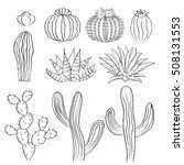hand drawn cactus set. cacti ... | Shutterstock .eps vector #508131553