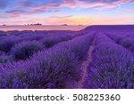 sunset over a violet lavender... | Shutterstock . vector #508225360