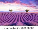 lavender field summer sunset... | Shutterstock . vector #508230880