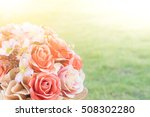 close up flowers background.... | Shutterstock . vector #508302280