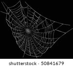 illustration with spider web... | Shutterstock . vector #50841679