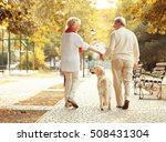 Stock photo senior couple and big dog walking in park 508431304