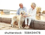 Stock photo senior couple and big dog on bund 508434478