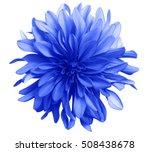blue flower on a white ... | Shutterstock . vector #508438678