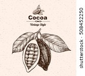 vector background with cocoa .... | Shutterstock .eps vector #508452250