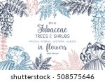 vintage trees and shrubs in...   Shutterstock .eps vector #508575646