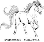 coloring page with horse | Shutterstock .eps vector #508605916