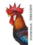 rooster red crest portrait... | Shutterstock . vector #508642849