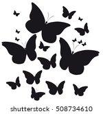 Beautiful  Butterflies ...