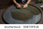 handpicked the freshly roasted... | Shutterstock . vector #508739518