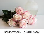 close up of pink and cream... | Shutterstock . vector #508817659