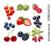 set of vector icons  juicy ripe ... | Shutterstock .eps vector #508836010
