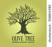 olive tree logo design. vector... | Shutterstock .eps vector #508841980