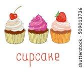cupcake   vector  illustration | Shutterstock .eps vector #509013736