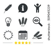 agricultural icons. gluten free ... | Shutterstock .eps vector #509045239