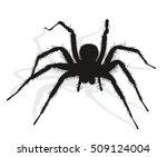 black spider silhouette.  | Shutterstock .eps vector #509124004