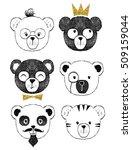 Cute Bear Illustration Series