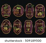 olive oil retro vintage... | Shutterstock .eps vector #509189500