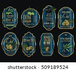 olive oil retro vintage... | Shutterstock .eps vector #509189524