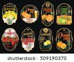set of organic fruit retro... | Shutterstock .eps vector #509190370