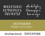 set of handwritten latin... | Shutterstock .eps vector #509239588