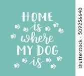 vector hand written... | Shutterstock .eps vector #509256640