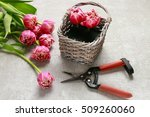How To Make Bouquet Of Tulips...