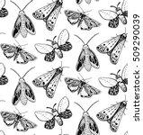 Moth Seamless Pattern. Hand...