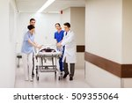 profession  people  health care ... | Shutterstock . vector #509355064
