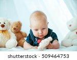 beautiful portrait of... | Shutterstock . vector #509464753