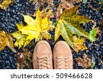looking down pair brown shoes... | Shutterstock . vector #509466628