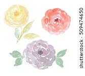 Handpainted Watercolor Flowers...