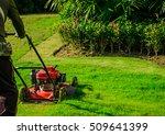 Lawnmower Cutting Bright Green...