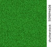 green grass texture vector... | Shutterstock .eps vector #509894608
