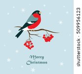 christmas greeting card. the... | Shutterstock .eps vector #509956123