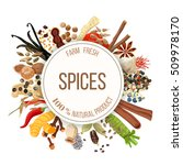 culinary spices big set with... | Shutterstock .eps vector #509978170