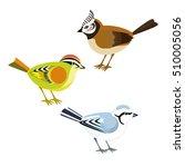 decorative birds  titmice... | Shutterstock .eps vector #510005056
