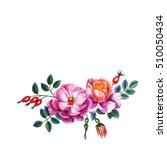 watercolor hand painted... | Shutterstock . vector #510050434