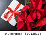 Beautiful Red Poinsettia On...