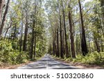 driving on the open road on the ... | Shutterstock . vector #510320860
