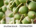 Small photo of Raw Nut ,many of nut