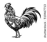 hand painted ink illustration... | Shutterstock .eps vector #510467713